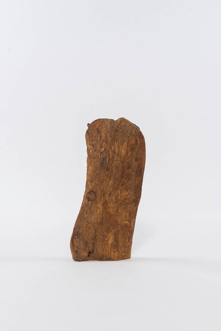 Primitive Contemporary Ebony Makonde African Wood Carving For Sale