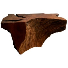 Contemporary Ironwood Console by Jerome Abel Seguin