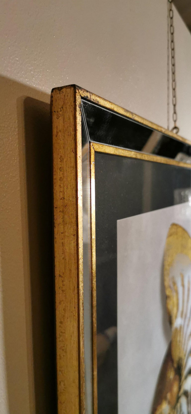 Contemporary Italian Golden Shell Print, Gilded Wood Frame with Mirror '2 of 4' For Sale 1