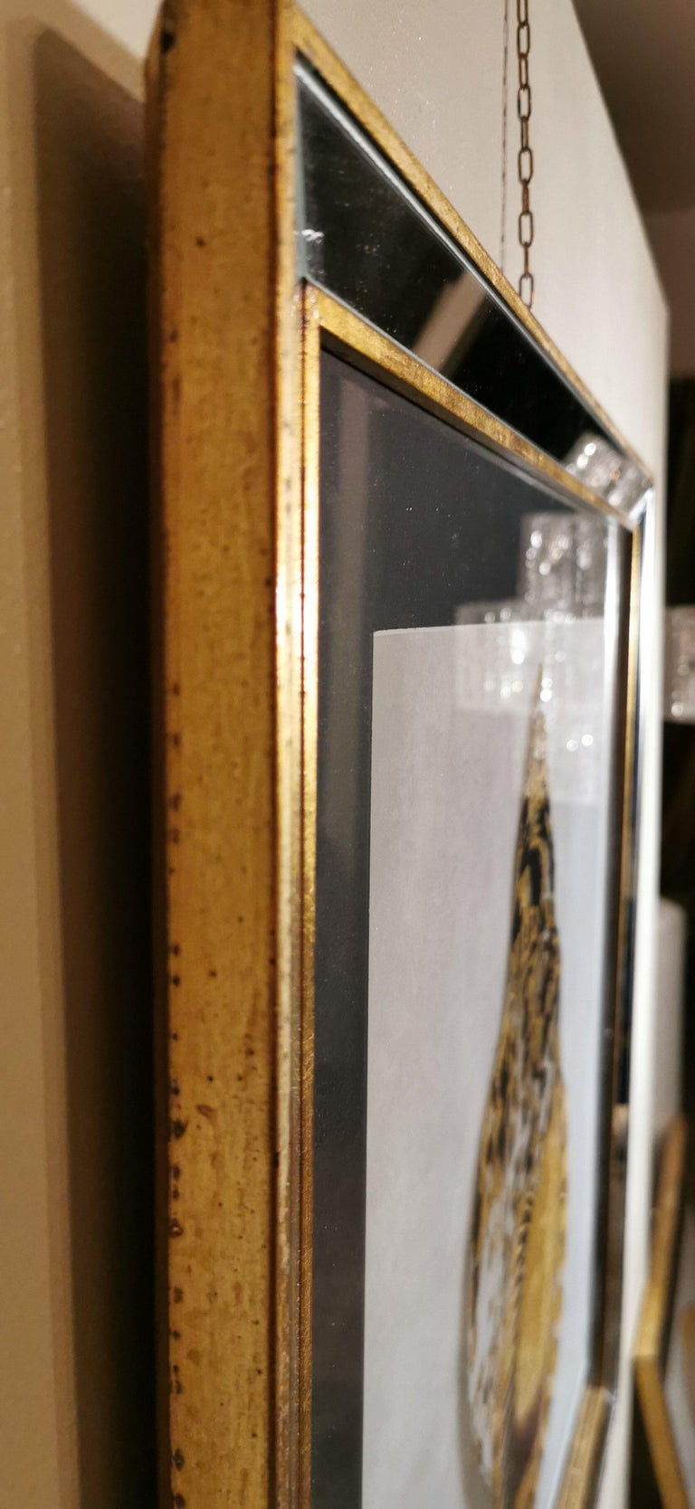 Contemporary Italian Golden Shell Print, Gilded Wood Frame with Mirror '3 of 4' For Sale 2