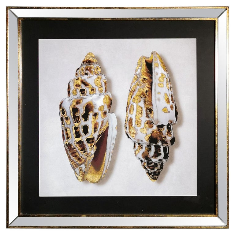 Contemporary Italian Golden Shells Print, Gilded Wood Frame with Mirror '4 of 4' For Sale
