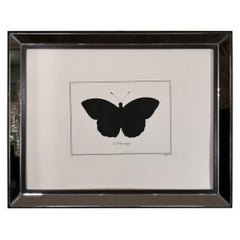 Contemporary Italian Hand Colored Leucippe Butterfly Print with Mirror Frame