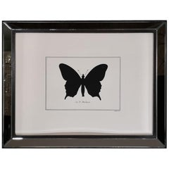 Contemporary Italian Hand Colored Machaon Butterfly Print with Mirror Frame