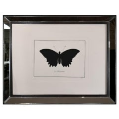 Contemporary Italian Hand Colored Polydamas Butterfly Print with Mirror