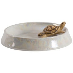 Contemporary Italian Porcelain Esotica Collection, Turtle by Vito Nesta