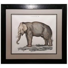 Contemporary Jungle Style Elephant Hand Painted Print with Black Coated Frame