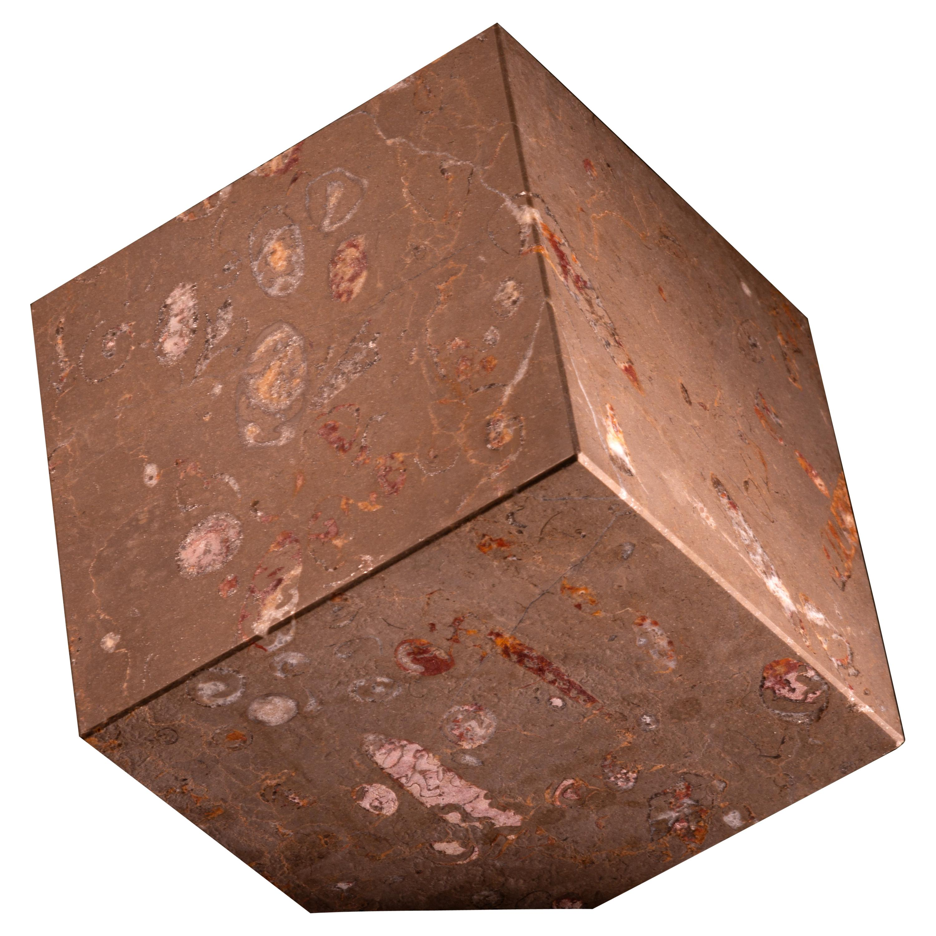 Aina Contemporary Jurassic Fossil Marble Glacies Cube, Living Collection