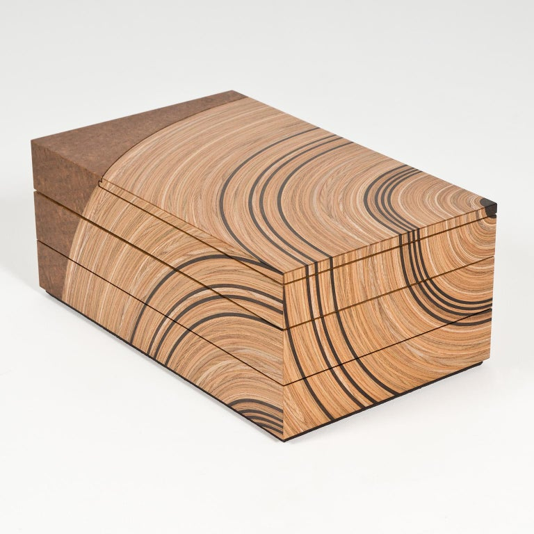 Contemporary Keepsake Box in Elm and Fumed Oak 'Family Tree' by Edward Johnson For Sale 5