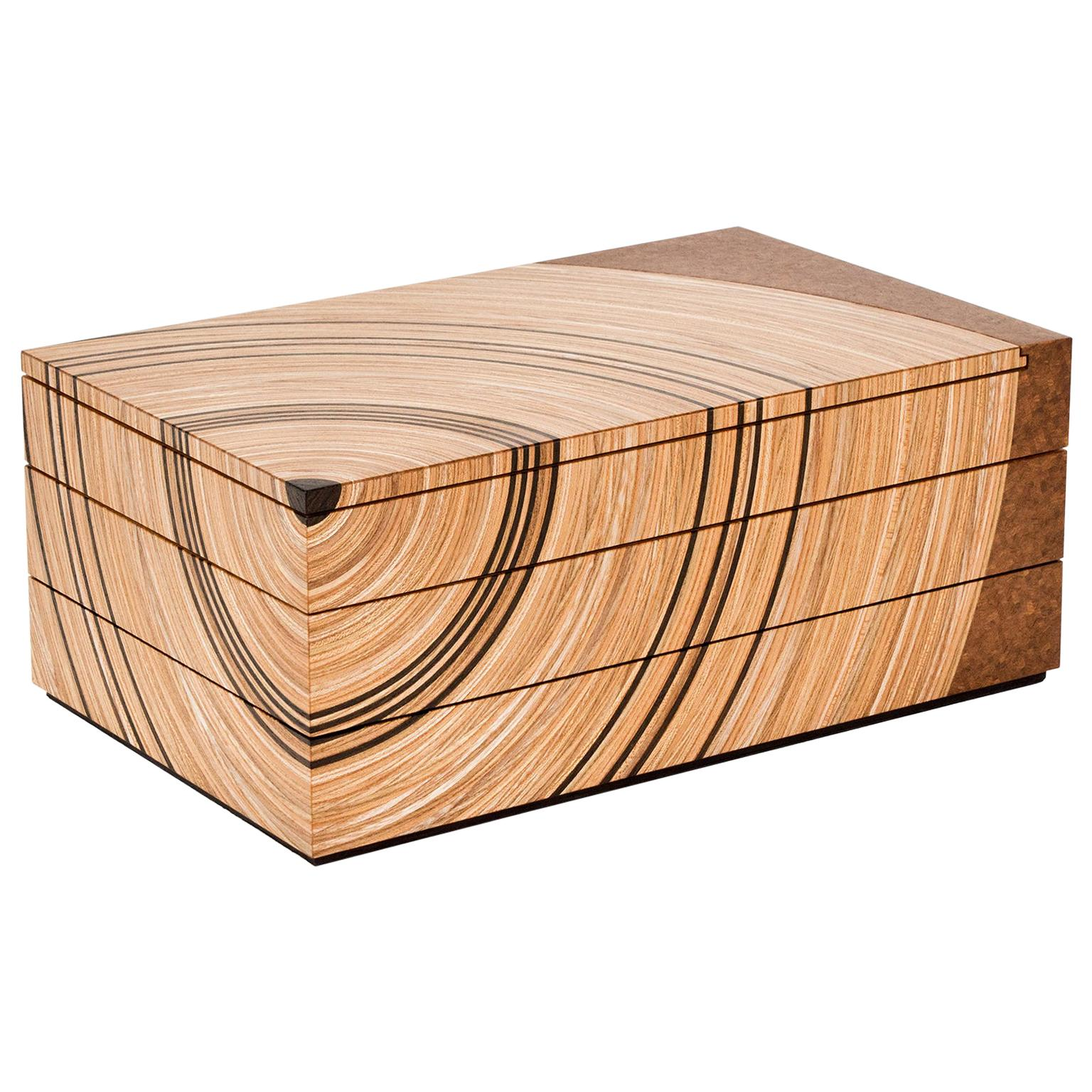 Contemporary Keepsake Box in Elm and Fumed Oak 'Family Tree' by Edward Johnson
