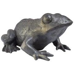 Contemporary Lead Frog