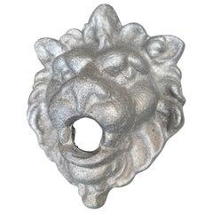 Contemporary Lion Spout