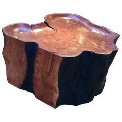 Contemporary Litchi Wood Coffee Table / Stool by Jerome Abel Seguin