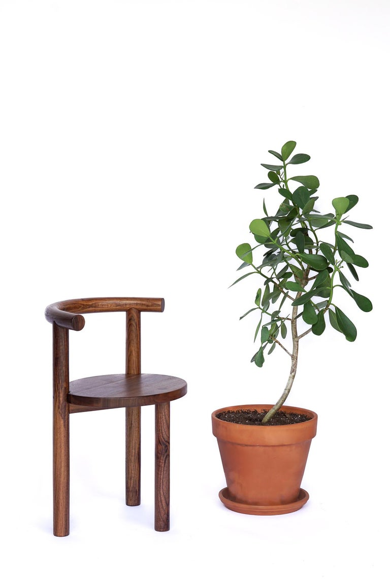 Modern Contemporary Macaroni Steam Bent Walnut Chair by Ordinal Indicator For Sale
