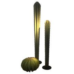 Contemporary Metal 'Cactus Garden'