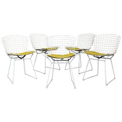 Contemporary Modern Harry Bertoia for Knoll Set 5 Side Dining Chairs 1980 Yellow