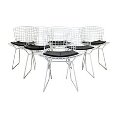 Contemporary Modern Set of 6 Side Wire Chairs by Harry Bertoia for Knoll