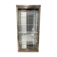 Contemporary Modern Two-Door Display Metal Vitrine/Cabinet