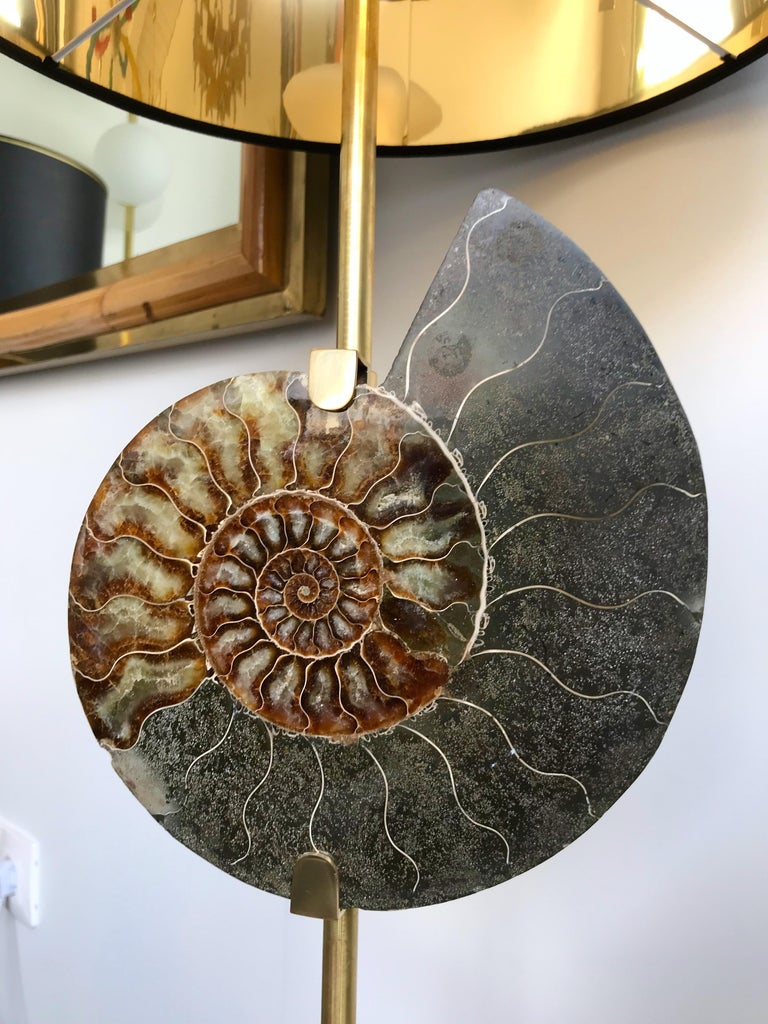 Contemporary Pair of Brass Lamps Ammonite Fossil, Italy For Sale 2