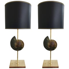 Contemporary Pair of Brass Lamps Ammonite Fossil, Italy