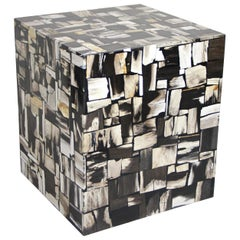 Contemporary Petrified Wood Side Table or Cube Stool