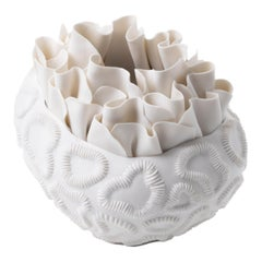 Contemporary Porcelain White Sculpture Sea Coral Natural Handmade Ceramic Fos