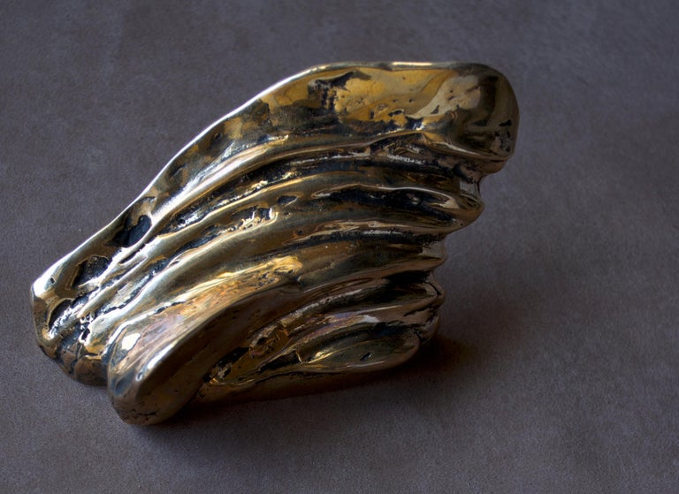 Small shiny sculpture that evokes vegetal and marine forms, smooth to the touch and made in bronze casting, according to the ancient technique of French sand molds. This handles are a sculptural touch for closets, doors or drawers.