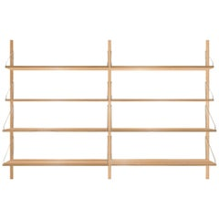 Contemporary Shelf Library Double Section
