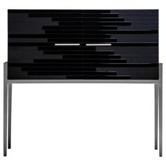 Contemporary Small Cabinet for Living Room in Black Lacquer and Black Oak