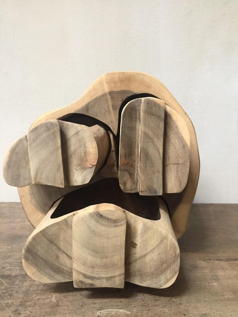 Contemporary Wood Turned Box For Sale 3