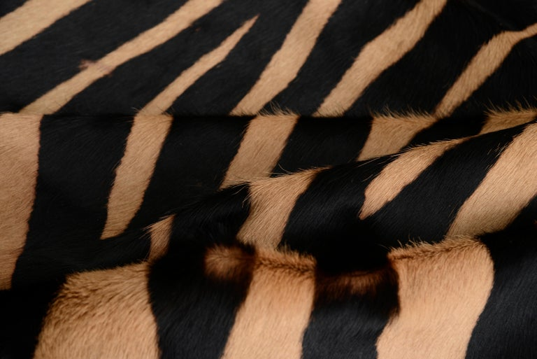 French Contemporary Zebra Stencil Cowhide Hair Lumbar Pillow, 100% Feather Filled