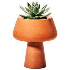 """Conterraneos"" Collection Table Planter Vasetti by Brunno Jahara"