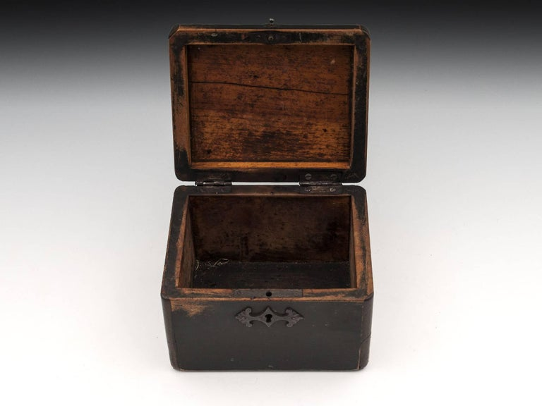 Continental Georgian Wooden Sycamore Hungarian Tea Caddy, Early 19th Century For Sale 2