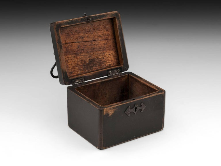 Continental Georgian Wooden Sycamore Hungarian Tea Caddy, Early 19th Century For Sale 3