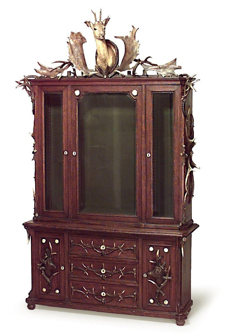 Continental German 19th Century Horn and Oak Bookcase Cabinet In Good Condition For Sale In New York, NY