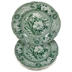 Copeland Garrett Spode Green Jonquil Botanical Transferware Dinner Plates S/6