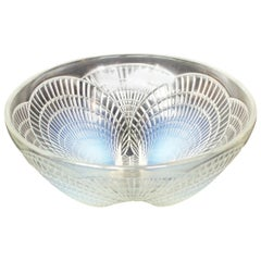 Coquilles Bowl No.3 a Blue Opalescent Glass Bowl by René Lalique