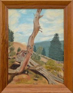 """Struggle at Timber Line, Rocky Mountain National Park, Colorado"""
