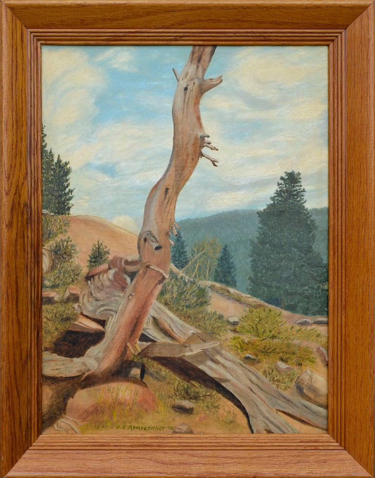 """Coral R. Armentrout Landscape Painting - """"Struggle at Timber Line, Rocky Mountain National Park, Colorado"""" - Landscape"""