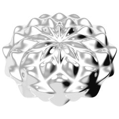 Corall i Eriçó Sterling Silver Paperweight Nº1 by House New York