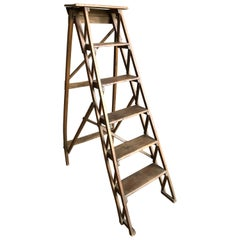 Country Store Ladder, 19th Century