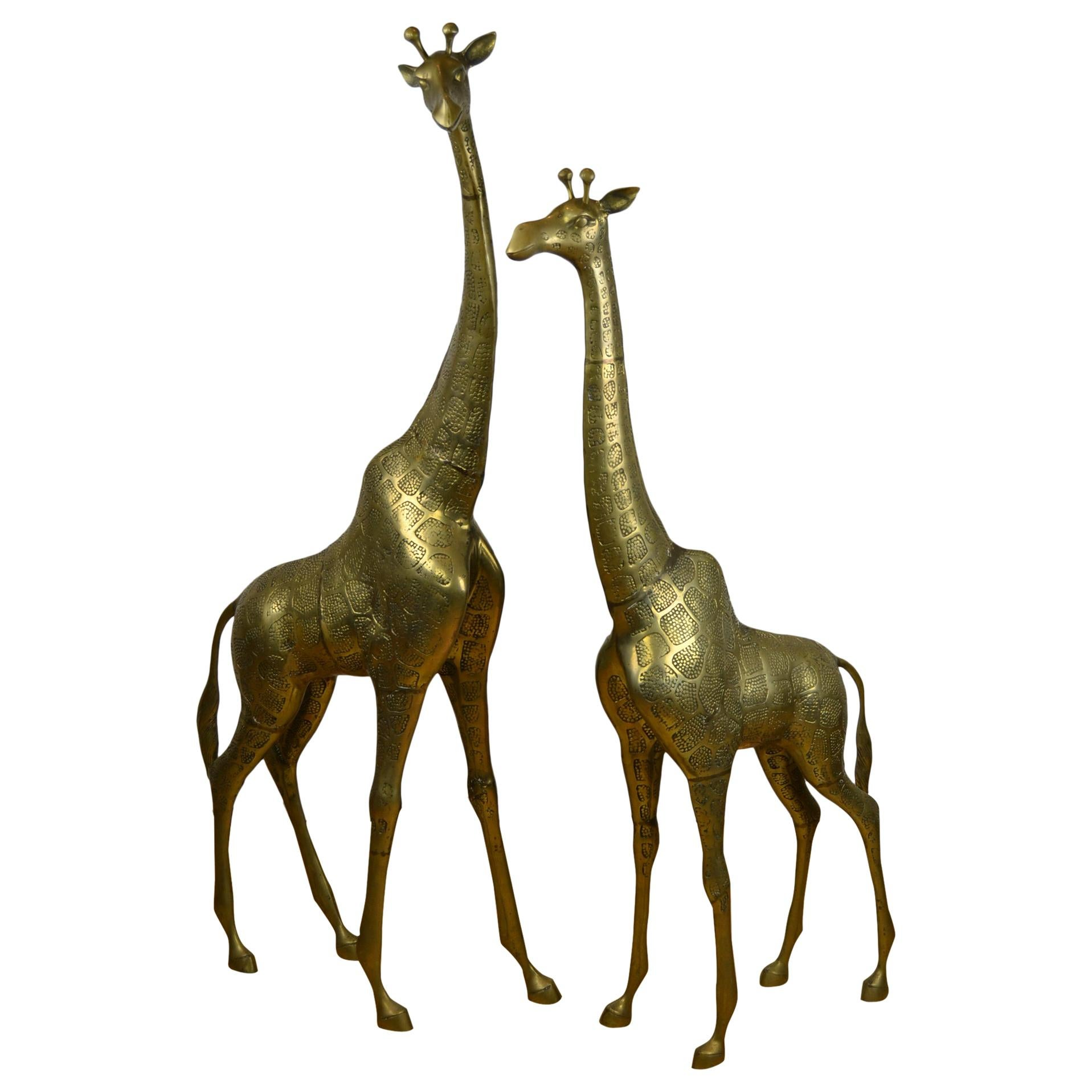 Couple of Large Brass Giraffe Floor Sculptures, Hollywood Regency, 1970s