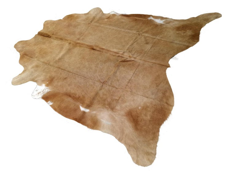 Large Cowhide rug caramel crème beige  Our premium Cowhides are of excellent quality - all hand selected. They go great with many decor styles and add a rustic look. All our Cowhide rugs are photographed separately and you will get exactly the