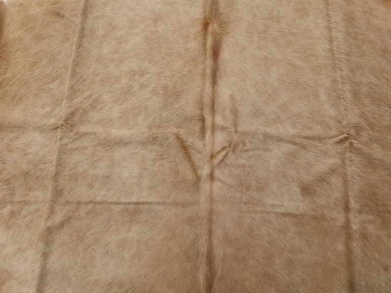 Cowhide Rug Beige Creme Large Size In New Condition For Sale In Lohr, Bavaria, DE