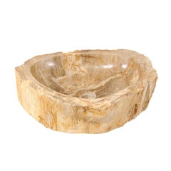 Cream, Tan and Beige Polished Petrified Wood Sink