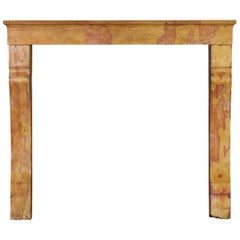 Created by Nature French 19th Century Vintage Fireplace Surround
