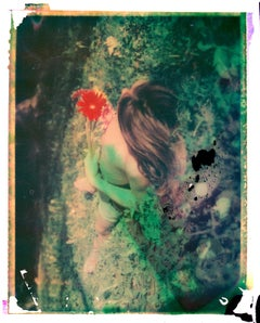 Gerbera  - Contemporary, Polaroid, Photograph, Childhood. 21st Century, abstract