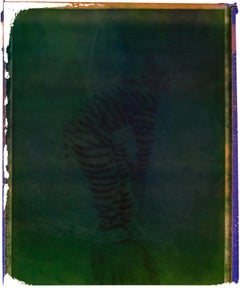 Tiger - Contemporary, Polaroid, Photograph, Childhood, abstract
