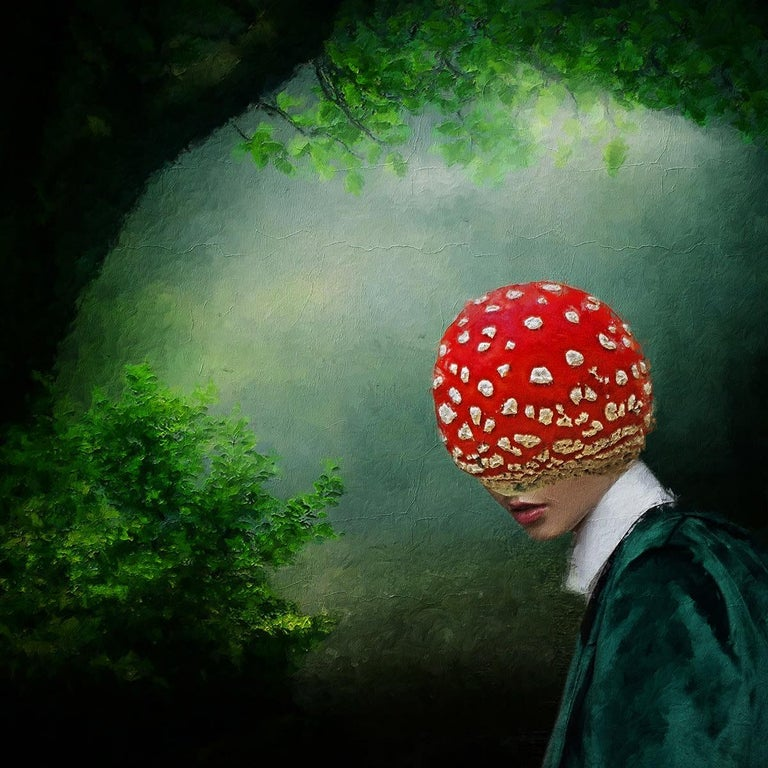 Cristina Schek Portrait Photograph - Pretty Fly For A Fungi In The Forrest