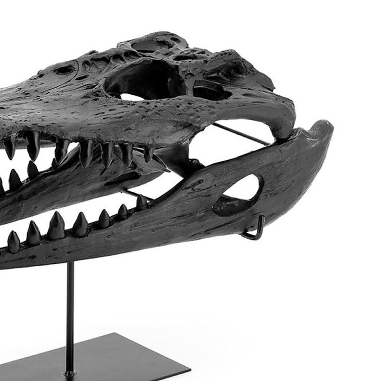 Blackened Croco Skull Sculpture in Black Finish For Sale