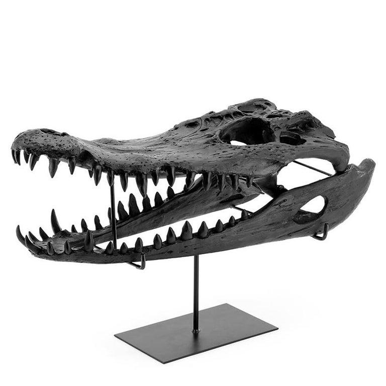 Croco Skull Sculpture in Black Finish For Sale